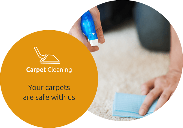 Carpet Deep Steam Cleaning Service